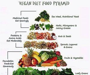 food, funny, and vegan image