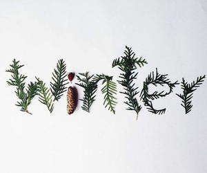 christmas, snow, and cozy image