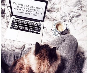 bed, cat, and coffee image