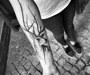 animal, arm tattoo, and tatto image