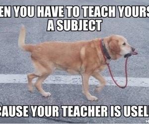 teacher, funny, and school image