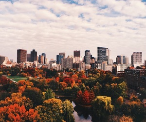 city, autumn, and beautiful image