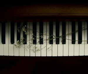 piano, music, and flowers image