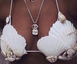 summer, shell, and bikini image