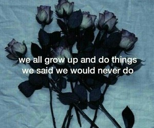 quotes, rose, and grunge image