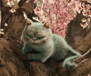 cat, alice, and alice in wonderland image