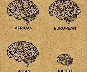 racist, brain, and racism image