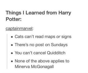 harry potter, quote, and rules image