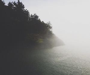nature, sea, and fog image