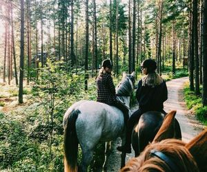 adventure, horse, and friends image