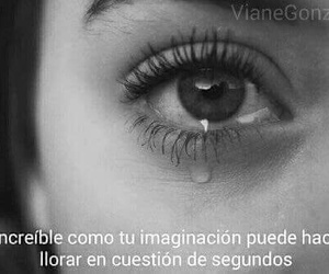 frases and cry image