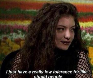 lorde, quote, and stupid image