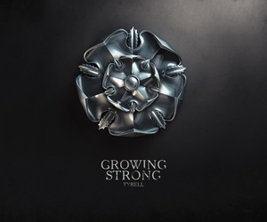 game of thrones and house tyrell image