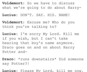 funny, harrypotter, and lord image