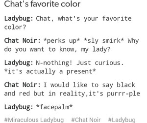 Chat Noir, colour, and funny image