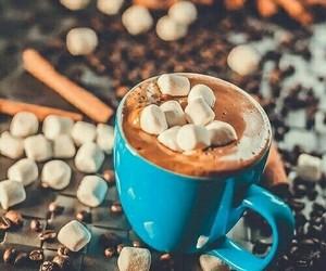 coffee, winter, and chocolate image