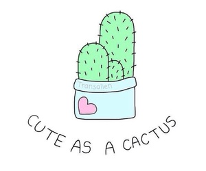 cactus and cute image