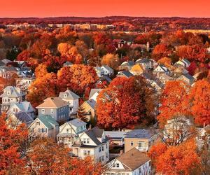 autumn, fall, and boston image