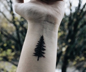 adventure, forest, and tattoo image