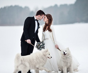 wedding, winter, and love image