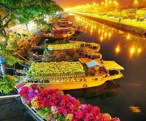 flowers, light, and Vietnam image