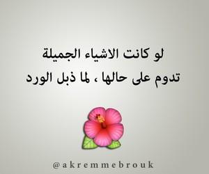 arabic quotes, اقتباس اقتباسات, and حكم اقوال image