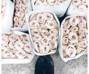 beautiful, roses, and bouquets image