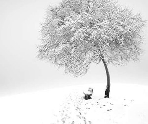 Bank, white, and snow image