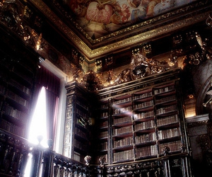 book, library, and portugal image