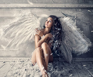 angel, wings, and feather image