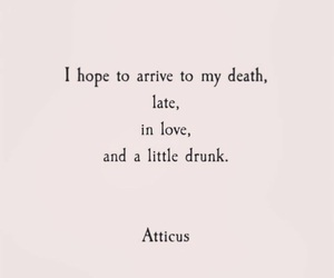 quotes, death, and drunk image