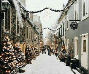 christmas, snow, and walks image