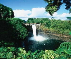 waterfall, green, and hawaii image