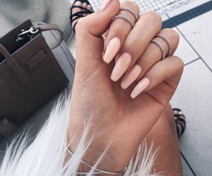 nails and notd image