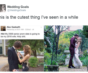 alex gaskarth, couple, and tweet image