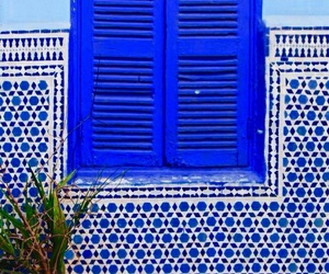 blue and window image
