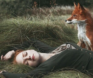 fox, girl, and photography image