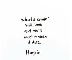 harry potter, quotes, and hagrid image