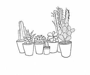 cactus, doodle, and drawing image
