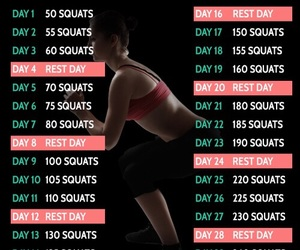 squats, challenge, and fitness image