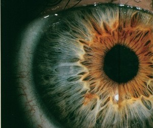 eye, eyes, and amazing image