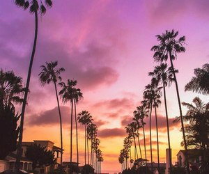 palms, sunset, and california image