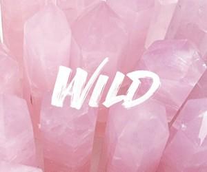 wild, pink, and troye sivan image