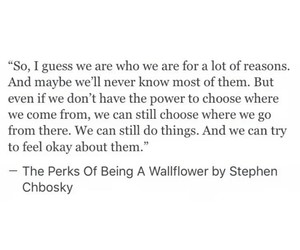 movies, perks of being a wallflower, and quotes image