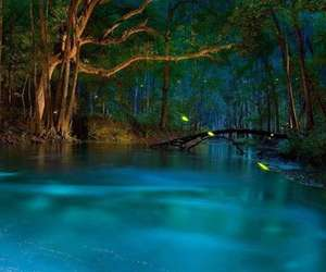 water, blue, and Dream image