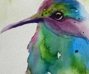 art, hummingbird, and water colour image