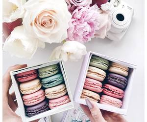 flowers, food, and macaroons image