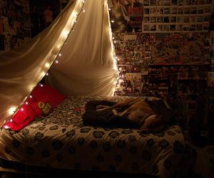 room, lights, and dog image