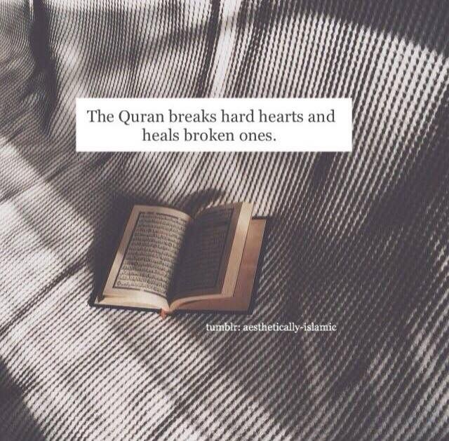 image about quote in islamic❤️ by donadalise on we heart it