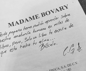 frases, libros, and madame bovary image